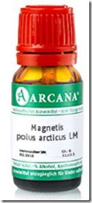 Magnetic Polus Articus